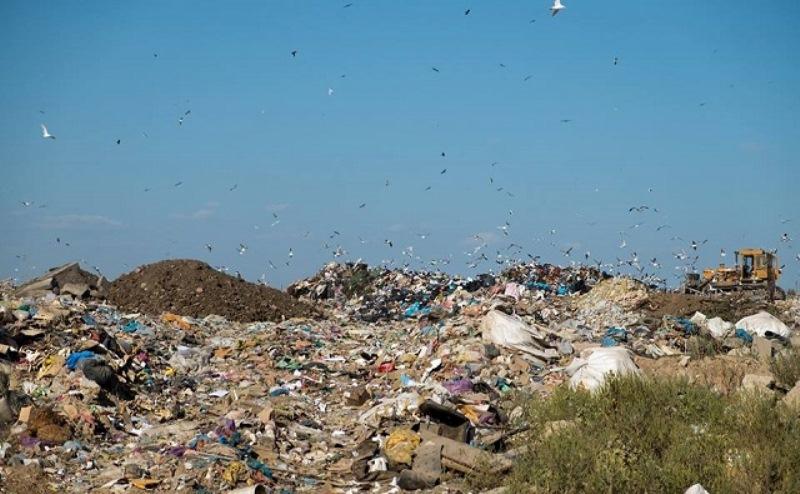 Ростовский мусорный полигон рекультивируют