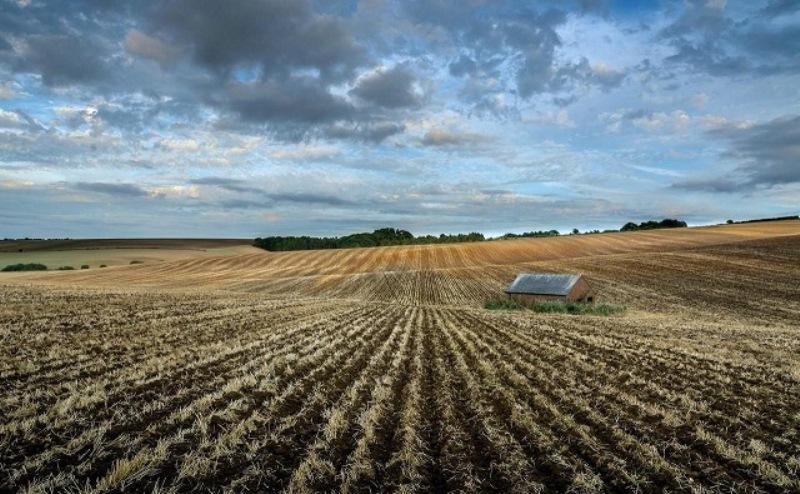 Агрохолдинг «Степь» скупает землю в Ростовской области