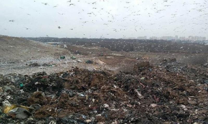 Ростовский мусор начали вывозить на новый полигон