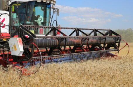 В Ростовской области рекордные урожаи зерновых культур
