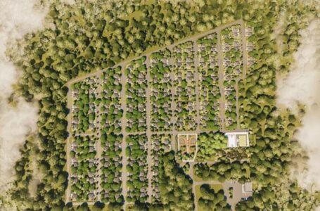 Петровский парк в Азове застраивать не будут