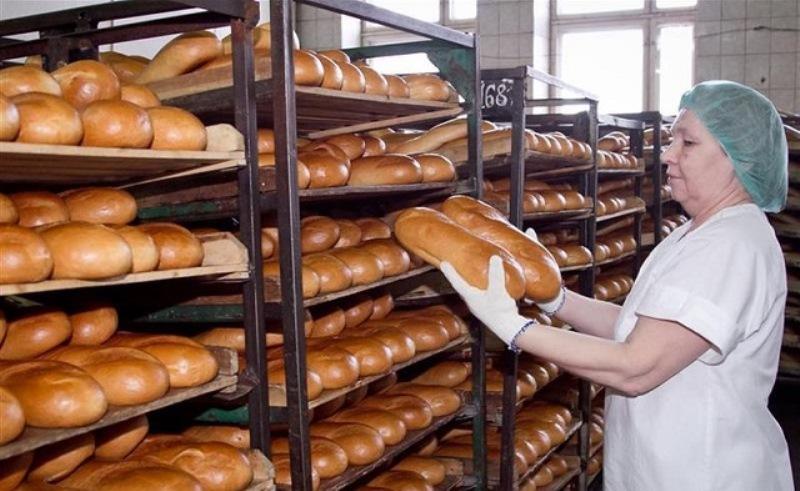 Программу по утилизации хлеба хотят разработать в Ростовской области