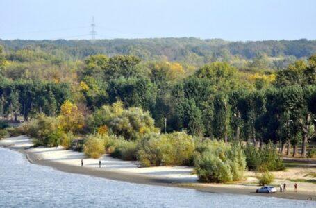147 деревьев вырубят ради ремонта газопровода