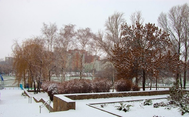 На реконструкцию парка «Дружба» требуется 500 млн. рублей