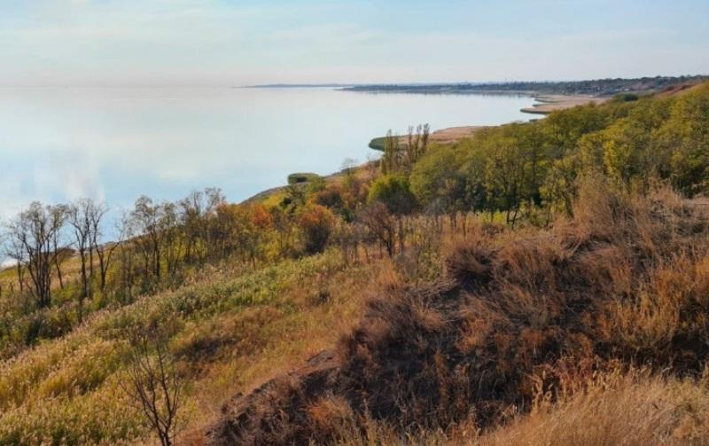 Под Ростовом строят платный парк