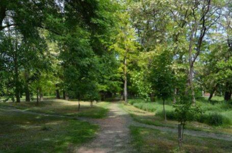 28 миллионов рублей потратят на благоустройство парка 8 Марта